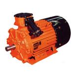 Электродвигатель асинхронный АИММ