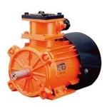 Электродвигатель асинхронный ВРП160-225