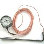 Термометр манометрический ТКП-100М1