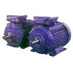 Электродвигатель асинхронный серий 5АМН