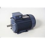 Электродвигатель асинхронный 2ДАТ-120-250
